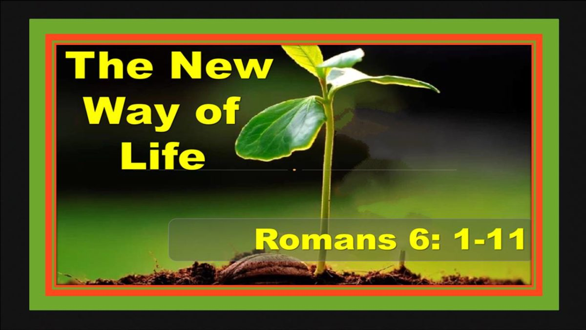 Holiness Past: Romans 6.1-11
